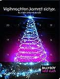 Billy Boy Adventskalender - Weihnachten kommt sicher. 24 plus 2 Kondome für eine sinnliche Vorweihnachtszeit, 1er Pack (1 x 26 Stück)
