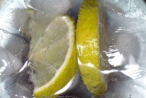 Gin Eiswuerfel Zitrone