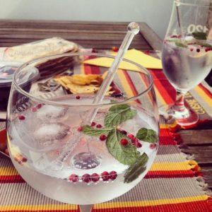 Gin Minze Fruechte