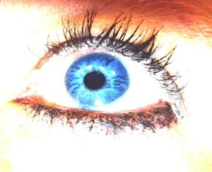 Wimpern Auge